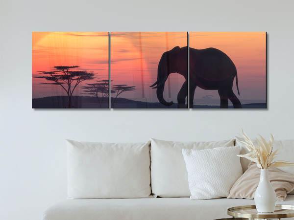 תמונת זכוכית של פיל בשקיעה
