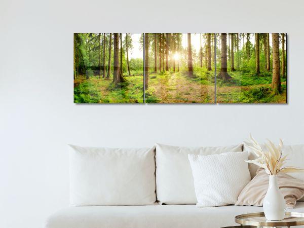 תמונת זכוכית של יער בפנורמה