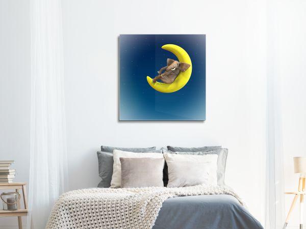 תמונת זכוכית של פיל על ירח