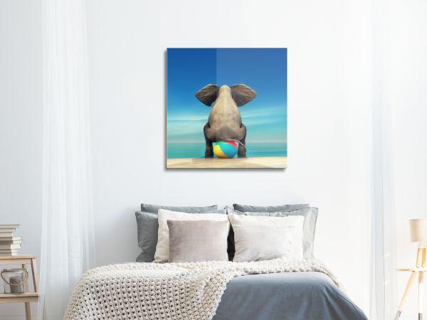 תמונת זכוכית של פיל יושב על כדור